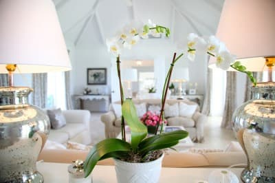 Orchid Living Area